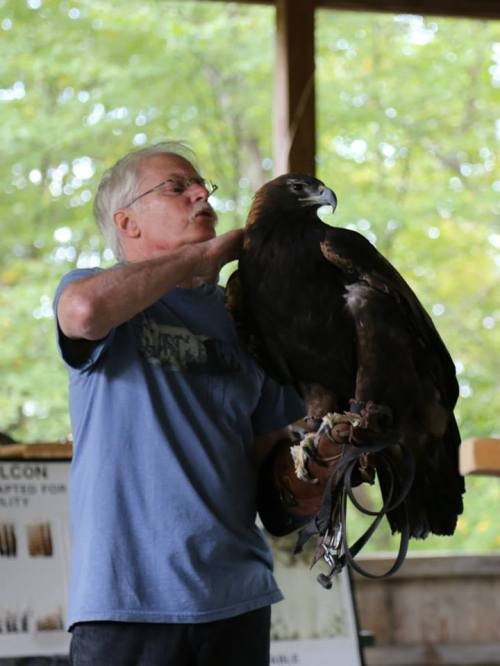 Bill Streeter of the DVRC with a golden eagle. Photo courtesy John Beckett.